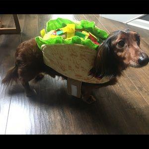 Small Pet Halloween Costume - Taco 🌮